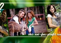 Currumbin Wildlife Sanctuary 1